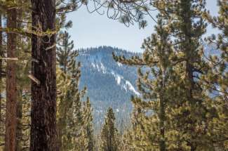 Lahontan Realty – Site 331 – 270 Laura Knight