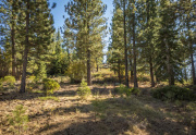 Lahontan-Golf-Club-lot-498-1