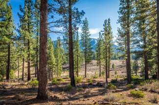 Lahontan Realty – Lot 436 – 12660 Lodgetrail Drive – SOLD