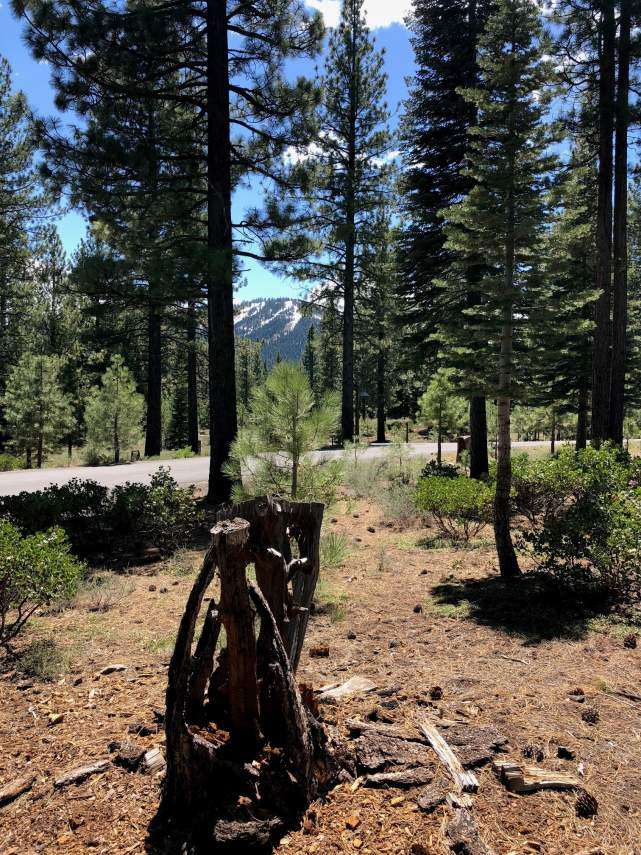 Sold – Lahontan Realty – Site 27 – 515 John Moody xxx