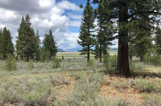SOLD Lahontan Realty – Site 298 – 7445 Lahontan Drive