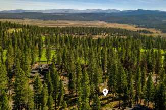 Sold: Lahontan Lot 151 for sale