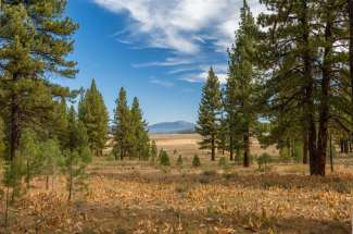 Sold – Lahontan Realty – Site 297 – 7435 Lahontan Drive