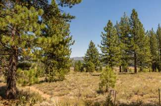 Sold- Lahontan Realty – Lot 306