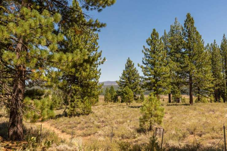 Sold- Lahontan Realty – Lot 306 xxx