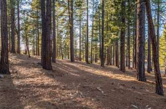 SOLD – Lahontan Realty – Site 319 – 7420 Lahontan Drive